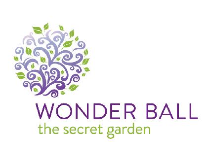 Wonder Ball 2016